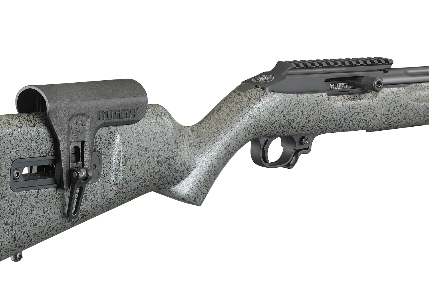 All Ruger Custom 10 22 Compeion S Include